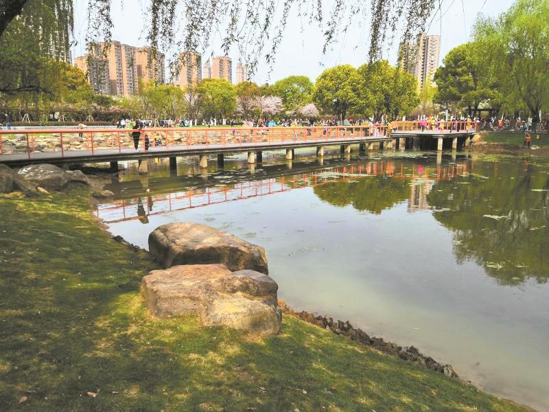 """一块仅有几条园路的绿地变身可供附近居民休憩闲逛的""""口袋公园"""""""